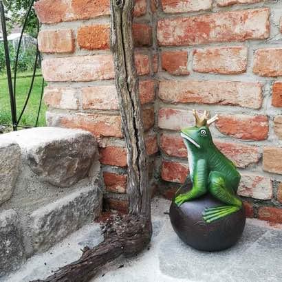 Der Frosch hat ein wunderschönes Zuhause gefunden. Vielen Dank für das herrliche Foto. Wir haben uns sehr darüber gefreut. ❤️