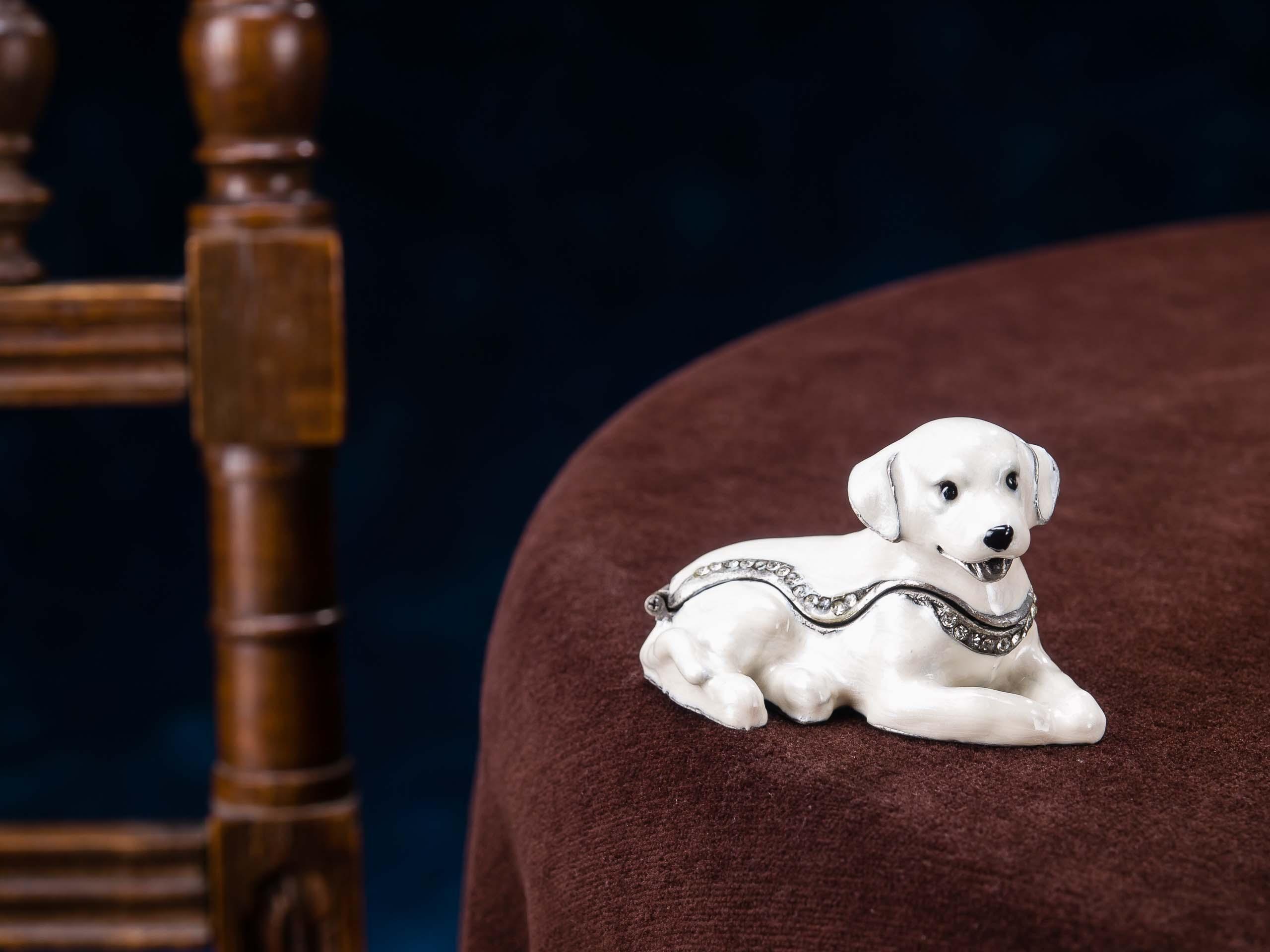 Boîte à bijoux//à pilules forme de chien//labrador
